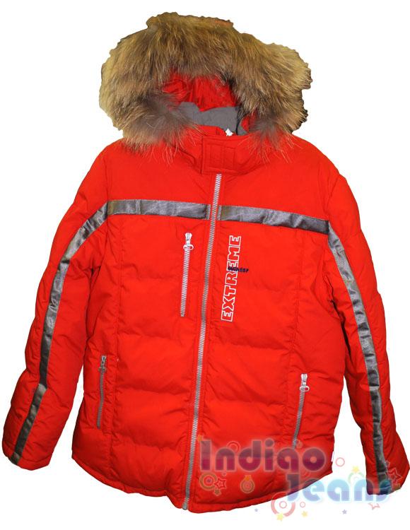 куртка зимняя для девушки.